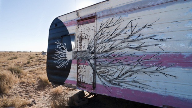 2501 - PAINTED DESERT PROJECT