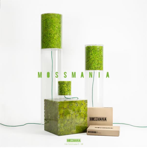 MOSSMANIA-01